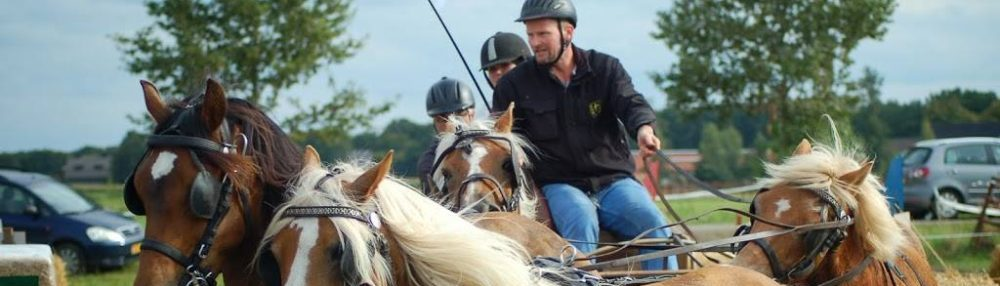 Paardensportvereniging de Burcht